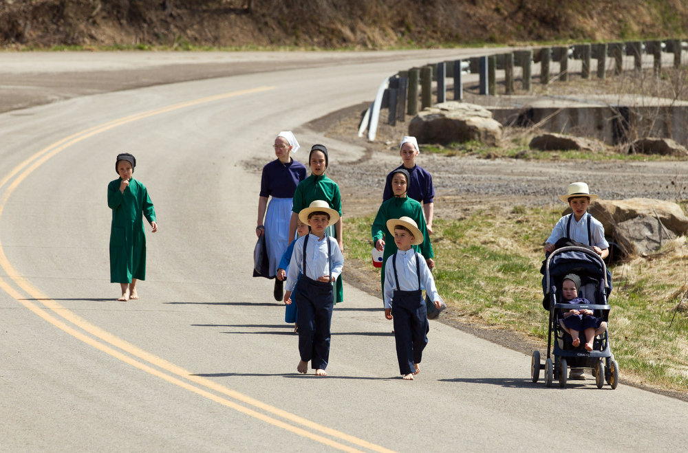 Description of . Wilma Mullet and her family walk to the school house for the final day of class on Tuesday, April 9, 2013 in Bergholz, Ohio.  Mullet and other Amish families gathered for a farewell celebration before members of the sect depart for prison following convictions in a beard cutting scandal. (AP Photo/Scott R. Galvin)
