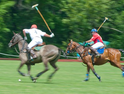 Tinicum Polo June 2019