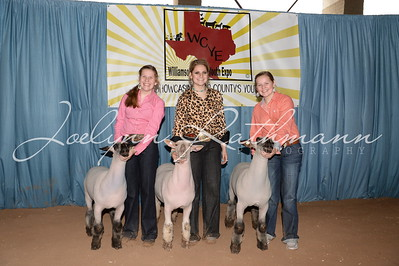 Lamb and Goat Backdrop