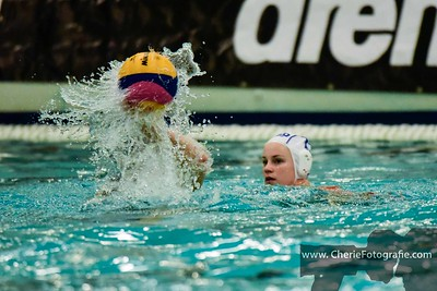 Waterpolo Dames NL-F