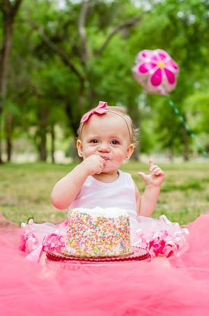 Van Tassell Cake Smash