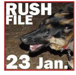 23 JANUARY (rush file)