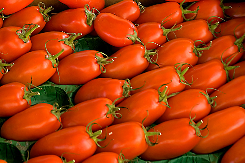 beaune tomates.jpg