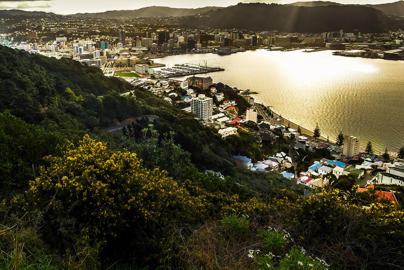 Nieuw_Zeeland_21_Dimitri_Belfiore.jpg
