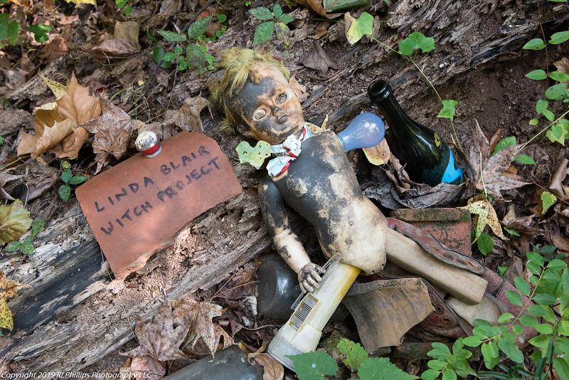 SPW-DollsHead-Sept2019-5971.jpg
