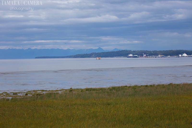 Anchorage Again-3-2.jpg