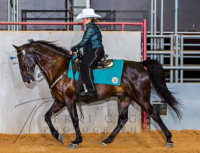 Under Saddle-Gaited