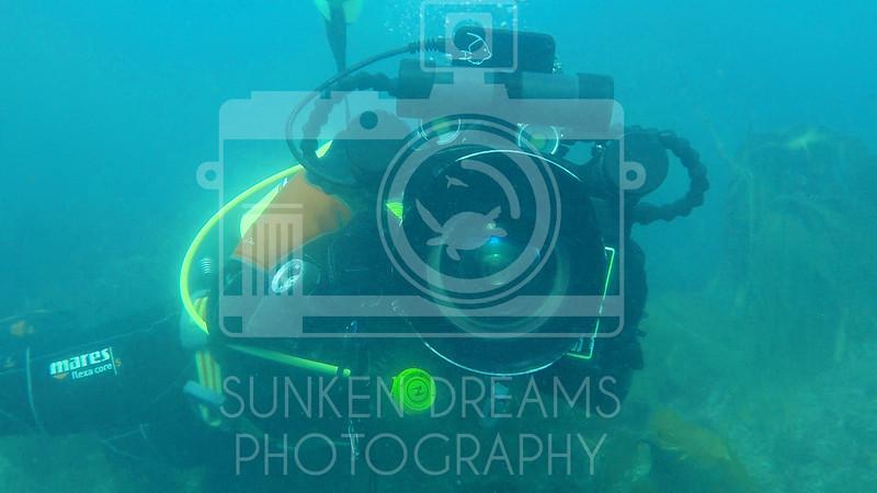 Lundy Island Edit.Still041.jpg