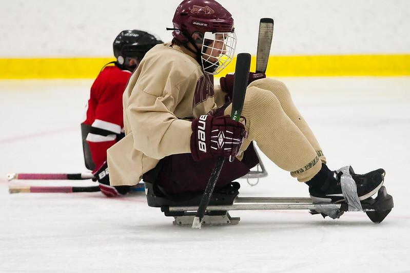 hockey_sled_011014_24.jpg