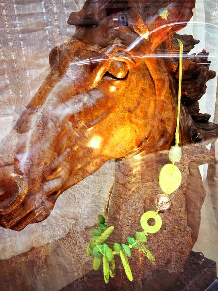 Equus Aparatuus