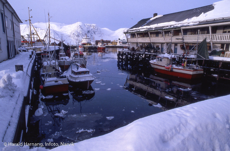 Hurtigruteskip Narvik ved kai på et anløp på Finnmarkskyten.