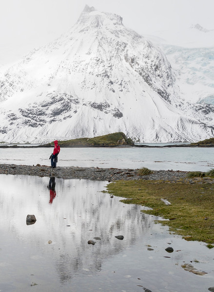 Landscapes_King Haakon Bay-5.jpg