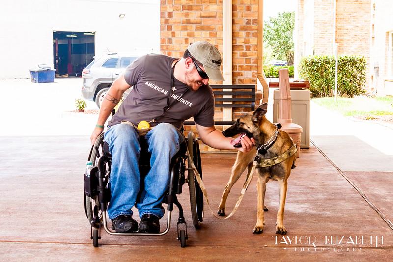 VALOR + KYLA, SERVICE DOGS