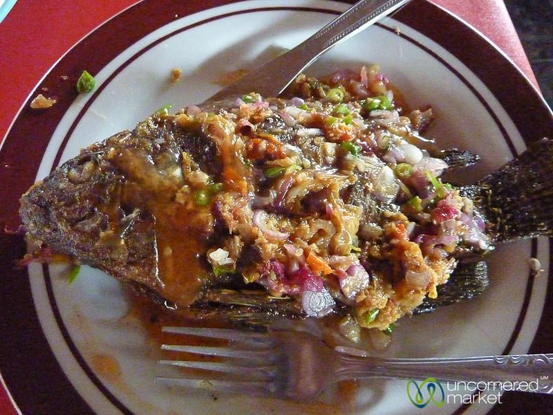 Colorful Fish in Kintamani - Bali, Indonesia