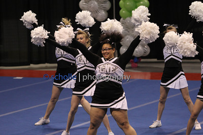 Lincoln Northeast Non-Tumbling