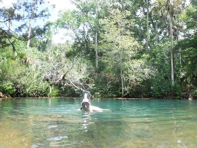 Salt Creek - Weeki Wachee, Florida