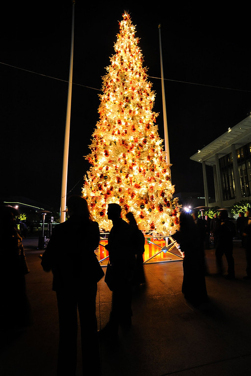. Visitors pass by the Los Angeles County Christmas Tree following the annual lighting ceremony December 2 , 2013 in Los Angeles, CA.  The 50-foot tree is located in front of the  Los Angeles County Music Center in downtown Los Angeles.(Andy Holzman/Los Angeles Daily News)