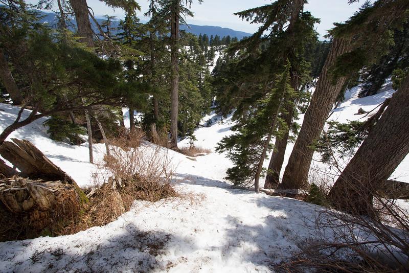 Evans Valley & Peak Golden Ears BC-8.jpg