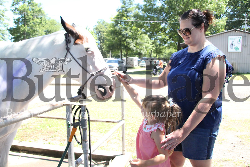 Madeline Samiga, 4, of Upper St. Claire pets Talia Bartley's horse Cloud, with her aunt Melissa Zarra of Wexford at the Big Butler Fair on July 7, 2018.