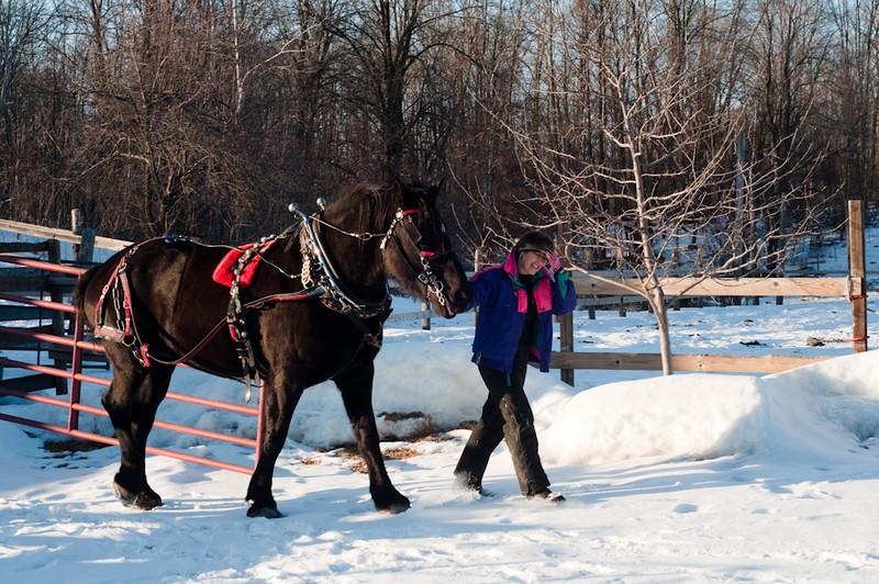 HorseRide-2.jpg