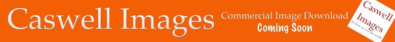 CIS PLace Holder Commerical - Orange.jpg