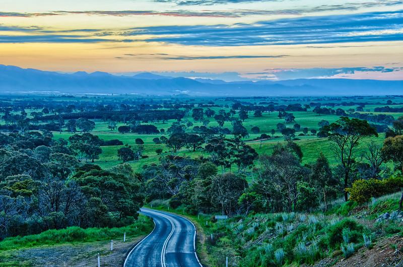 The beautiful Australian bush