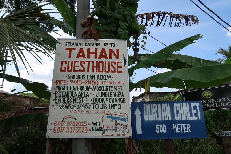 IMG_5244-tahan-guesthouse.JPG