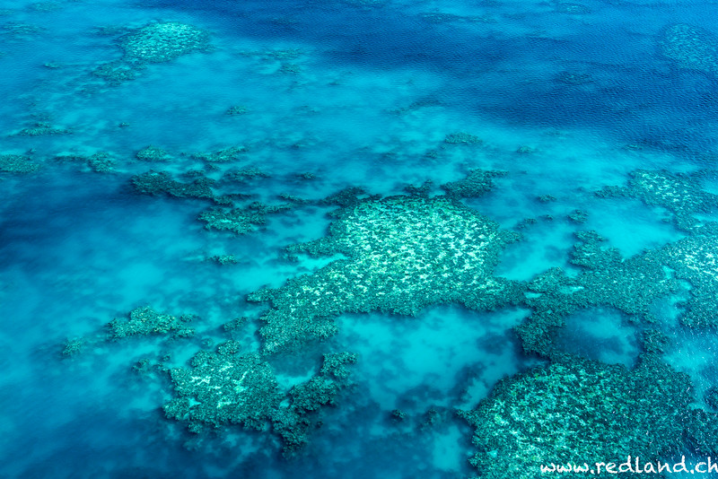 Airle Beach Whitsunday Island Hook Reef