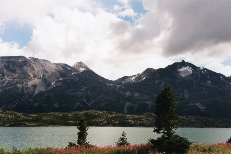 Alaska08.jpg