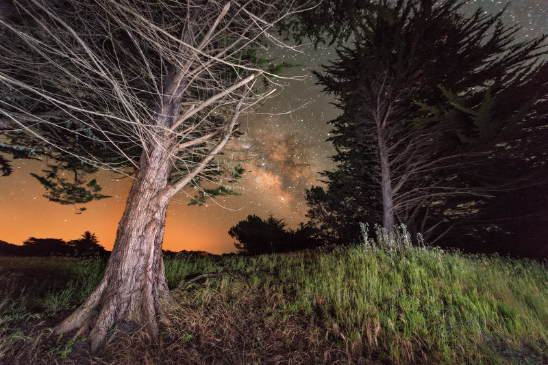 Late Spring Night, Sea Ranch, California