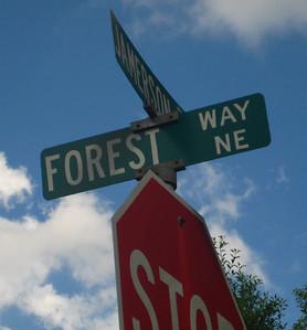 Forest Chase Marietta GA