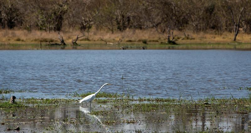 2014-08Aug-Okavango Masters-27-Edit.jpg