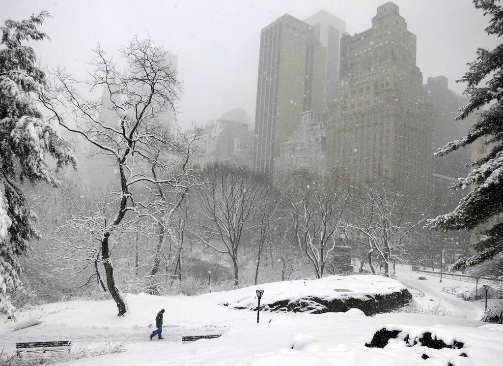 . A man walks through Central Park after a snowstorm blanketed the park in New York, March 8, 2013.  REUTERS/Gary Hershorn