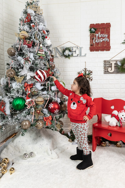 11.30.19 - Clarice's Studio Christmas Mini Session - -60.jpg