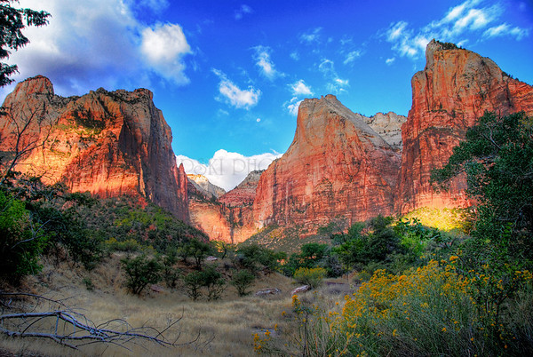 ZION NATIONAL PARK HDR