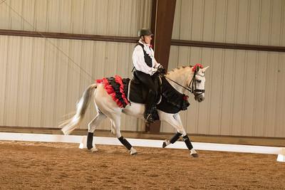 Horse 625