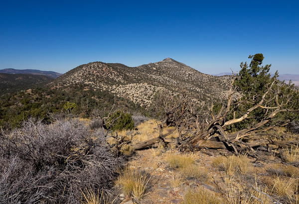 Tip Top Mountain and Mineral Peak  - Rattlesnake Canyon Area of SBNF   11/05/16