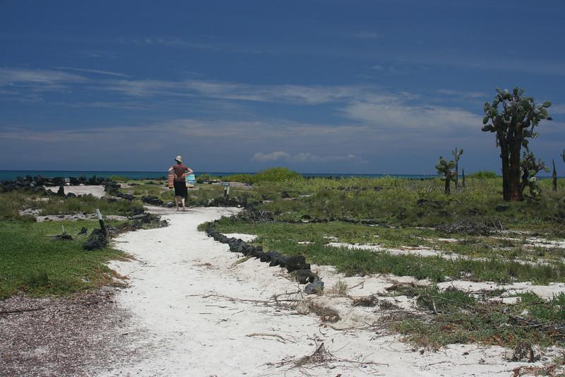 Walking to Turtle Bay on Isla Santa Cruz.