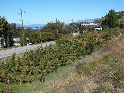 14 September : Along the Kettle Valley railbed, Penticton, BC