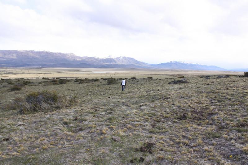Patagonian pampas