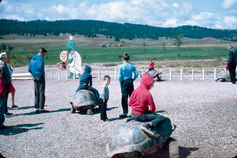 1965-09 - Black Hills - tourtise ride area