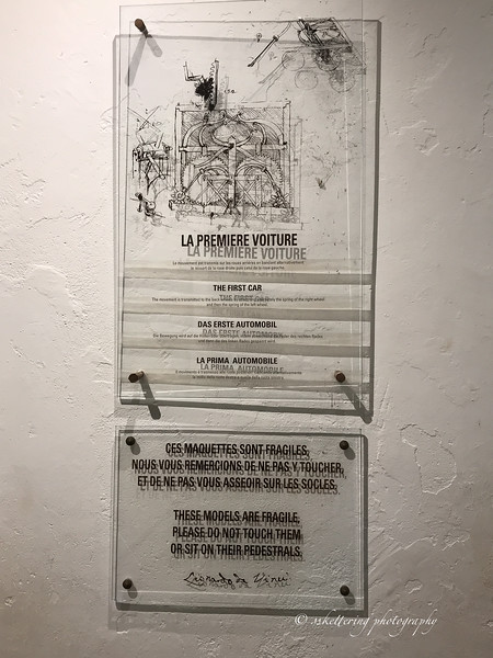 france19-1446.jpg