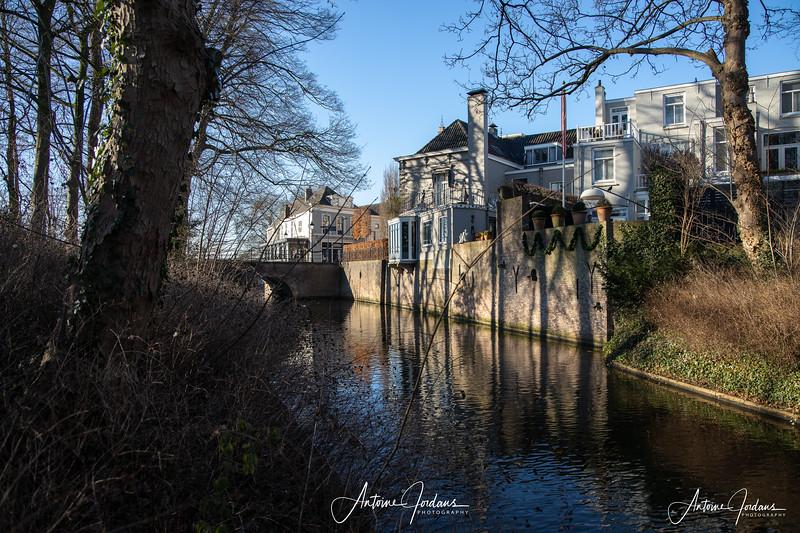 Morning walk thru Het Bosche Broek