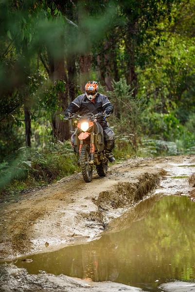 2019 KTM Australia Adventure Rallye (478).jpg