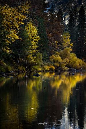 Fall in Yosemite 2018