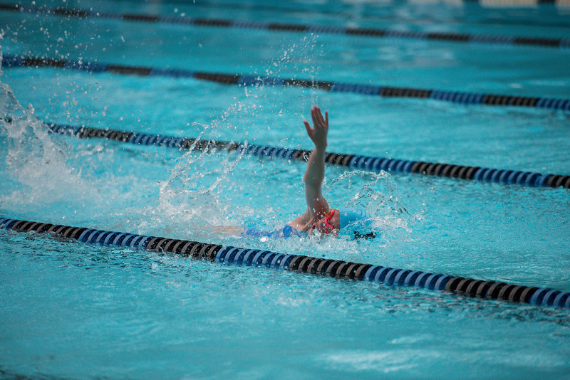 lcs_swimming_kevkramerphoto-1042.jpg