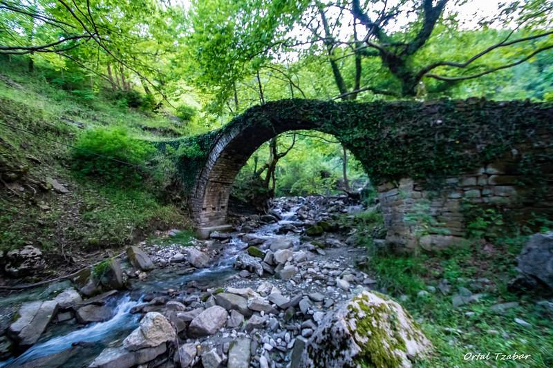 הגשר בוורגורליס.jpg