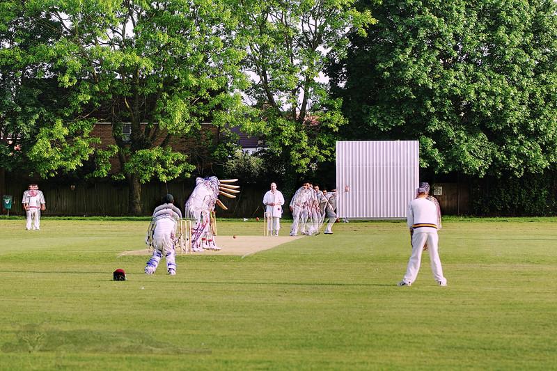 Cricket Doodle