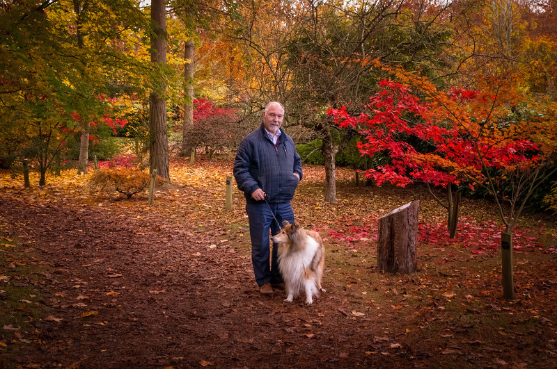 Man and dog in autumn