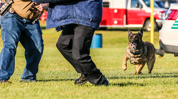 K9 Demonstration - Broadview Heights Home Days